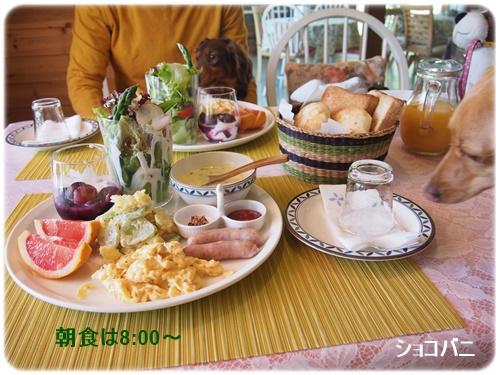 暖だんの朝食
