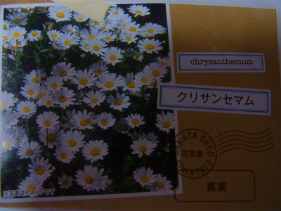 syukusyo-RIMG1128.jpg