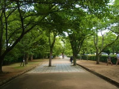 syukusyo-RIMG1174.jpg