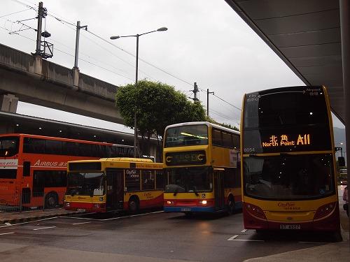 P5231635.jpg