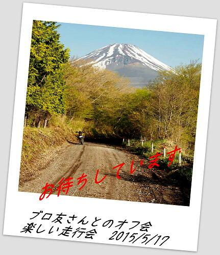 P5060014B.jpg