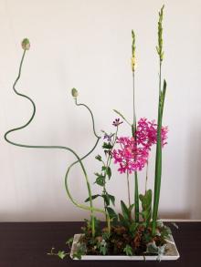 201504花