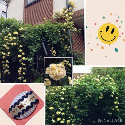 fc2blog_20150421160511fb7.jpg
