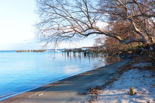 小川原湖4