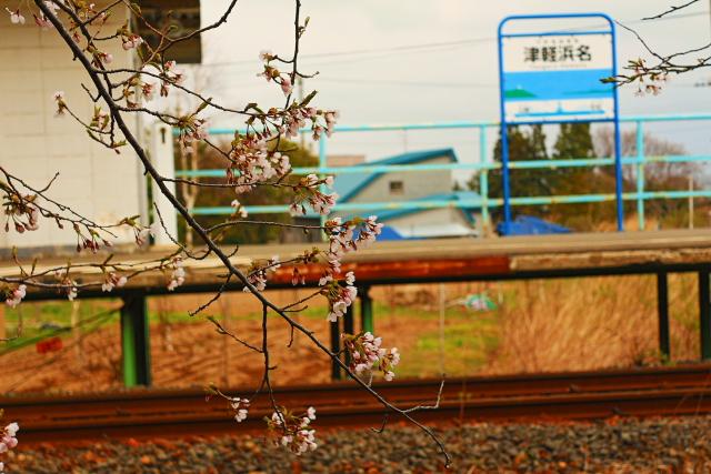 津軽線浜名4