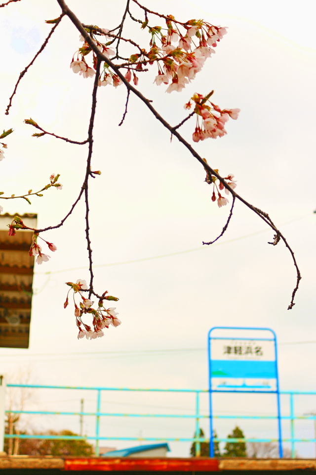 津軽線浜名5