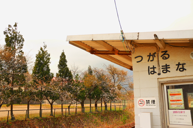 津軽線浜名6