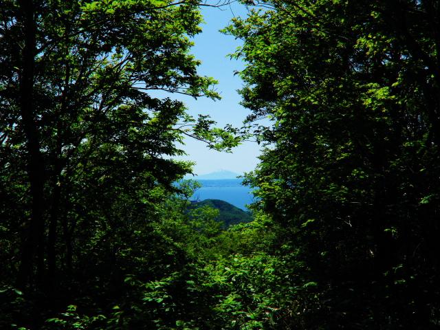 高森山15
