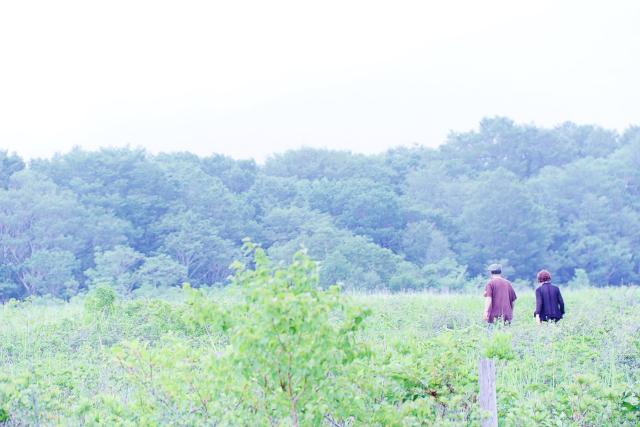 田代湿原11