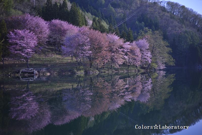 2015 5月2日 中綱湖 1A