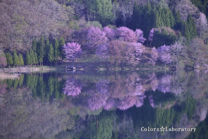 2015 5月2日 中綱湖 4A