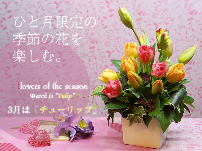 誕生日花 おすすめ 人気 アレンジ
