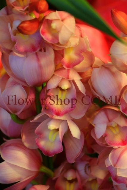 冬の贈り物 花 シンピ