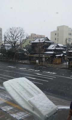 150130_yuki