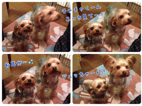 fc2blog_20150305182829b91.jpg