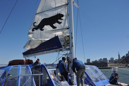 A-Cat Down the sail