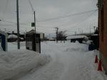 雪が凄い・・・
