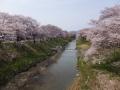 fujitagawa4-web300.jpg