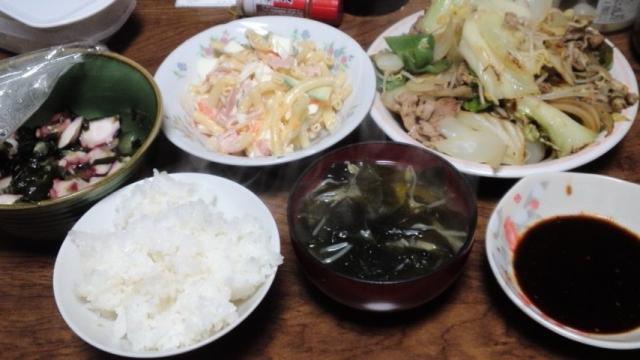 150415_肉野菜炒め7