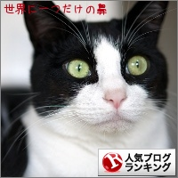 dai20140113_banner.jpg