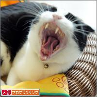 dai20140424_banner.jpg