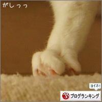 dai20141215_banner.jpg