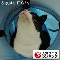 dai20141217_banner.jpg