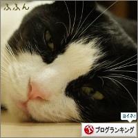 dai20141218_banner.jpg