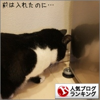dai20141225_banner.jpg