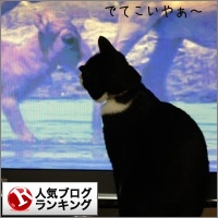 dai20150106_banner.jpg
