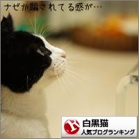 dai20150109_banner.jpg