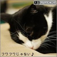 dai20150114_banner.jpg