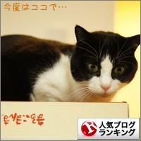 dai20150115_banner.jpg