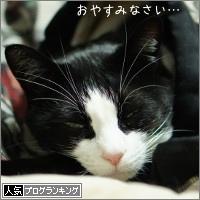 dai20150122_banner.jpg