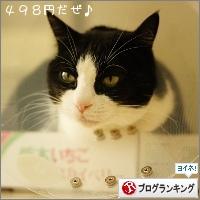 dai20150204_banner.jpg