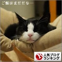 dai20150217_banner.jpg