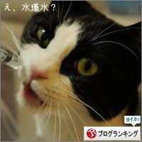 dai20150225_banner.jpg