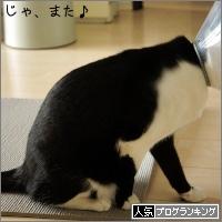 dai20150302_banner.jpg