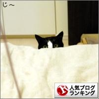 dai20150306_banner.jpg