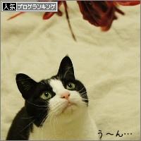 dai20150310_banner.jpg