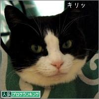 dai20150312_banner.jpg
