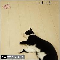 dai20150316_banner.jpg