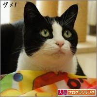 dai20150318_banner.jpg