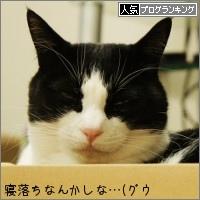 dai20150327_banner.jpg