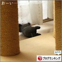 dai20150401_banner.jpg