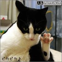dai20150402_banner.jpg