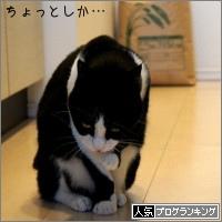 dai20150403_banner.jpg