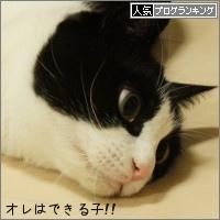 dai20150408_banner.jpg