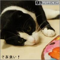 dai20150410_banner.jpg