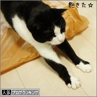 dai20150420_banner.jpg